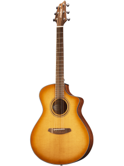Breedlove Signature serie...