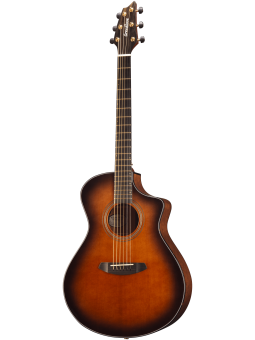 Breedlove Performer serie...
